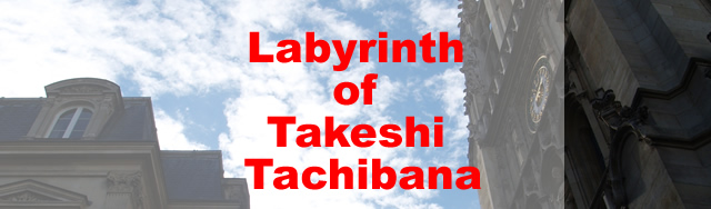 Labyrinth of Takeshi Tachibana