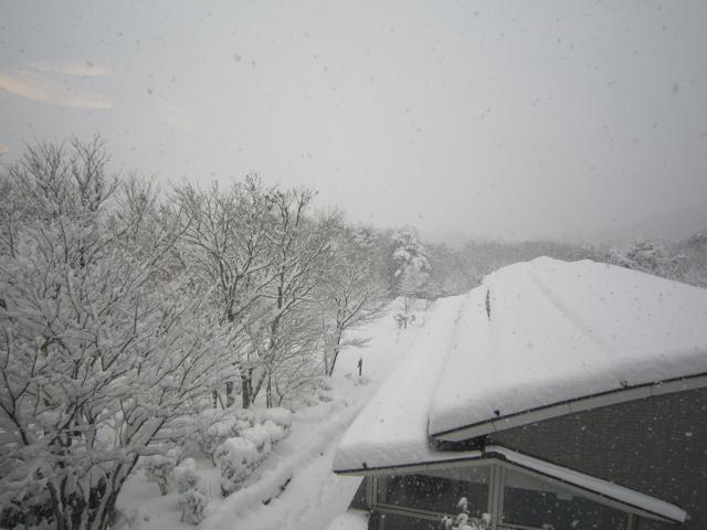 ランニング日誌(10/04/17)福島大雪帰京後ショートラン![Runnin' Higher]