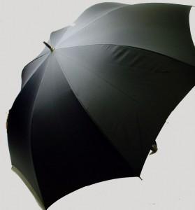 大きなサイズのジャンプ傘を楽天でお得に購入♪ [今日の楽天]
