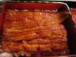 うなぎ「東京 東の横綱」 南千住「尾花」で鰻祭り!