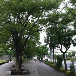 40男のボディ・マネジメント日誌(2011/09/07)秋の11km皇居ラン!