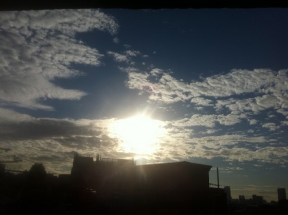 ボディ・マネジメント日誌(2011/09/22)台風一過で8.6kmラン