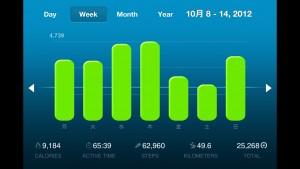 週次の振り返り  膝痛と風邪と引き篭もりの1週間  カラダログ週報 [2012 CW42]