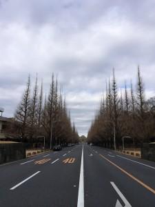 快調!お一人さまハーフマラソン — 東京マラソンまで49日![ランニング日誌]