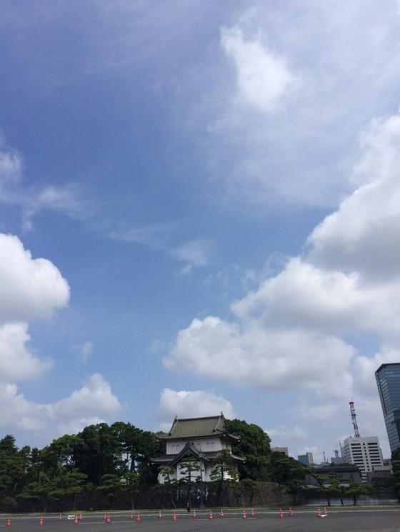 皇居一周14kmLSD [富士山マラソンまで133日・ランニング日誌]
