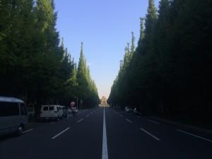 今朝は暑かった!大量発汗12kmラン! [富士山マラソンまで103日・ランニング日誌]