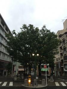 今日も夏風邪1kmラン 徹底的に休足しよう! [富士山マラソンまで93日・ランニング日誌]
