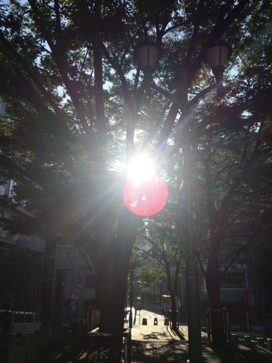 夏風邪はかなり快復方向へ 一気に治そう1kmラン  [富士山マラソンまで89日・ランニング日誌]