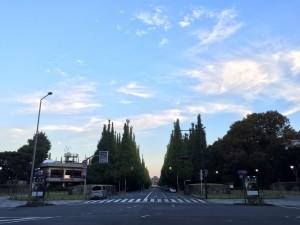 深まる秋を感じつつ早朝10kmラン!  [富士山マラソンまで31日・ランニング日誌]