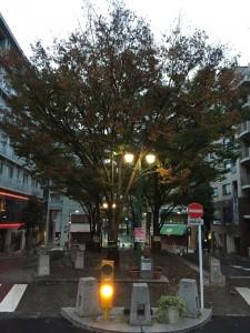 11月も頑張ろう!雨の1kmランスタート  [富士山マラソンまで29日・ランニング日誌]