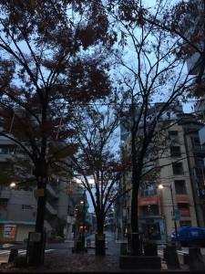 今日から12月!次は東京マラソン目指してまずは筋肉痛1kmラン!  [東京マラソンまで83日・ランニング日誌]