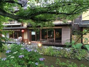雨の京都 祇園白川散策