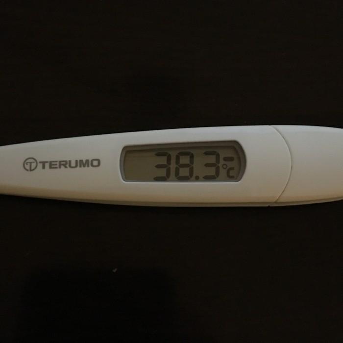 謎の高熱でダウン → 15時間寝たら平熱に 新月のデトックスだった??
