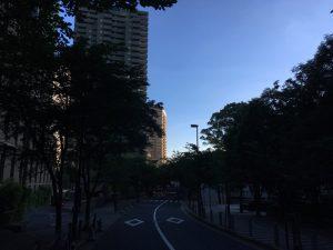 快晴!TLI講座前の早朝3kmラン!!   [那須塩原ハーフまであと96日 ランニング日誌]