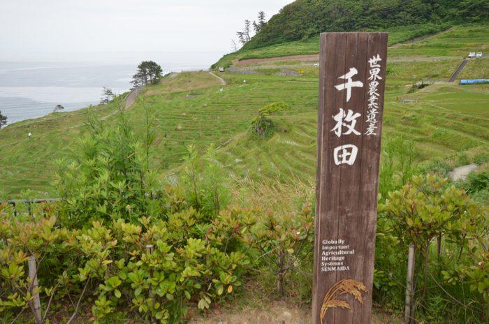 白米千枚田(しろよねせんまいだ)〜 石川県輪島にある世界農業遺産の棚田の風景が素晴らしかった!! [2016年6月 北陸旅行記 その37]