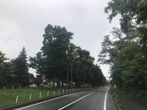 札幌ランニング日誌 すすきのから大通公園を西に向かい円山公園を往復した11kmラン!! [2017年6月 北海道旅行記 その10]