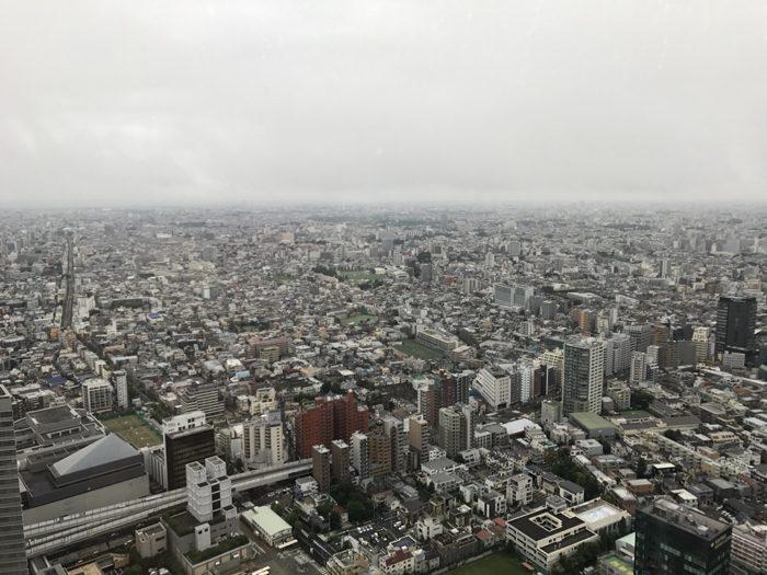 雨が続く鎌倉を脱出して小旅行と会食とLPLだった33週/再び引き篭もりとボディメイクに専念する34週 [公開週次レビュー&デザイン]